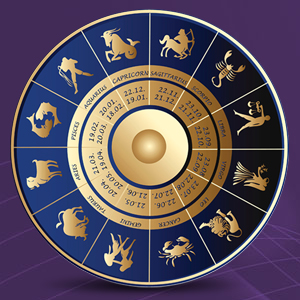 Vedic Astrologer in Delhi