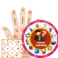 Career Astrologer Saket
