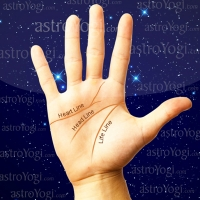 Indian Palmistry Services Gautam Nagar