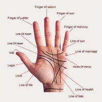 Palmistry Services Geeta Colony